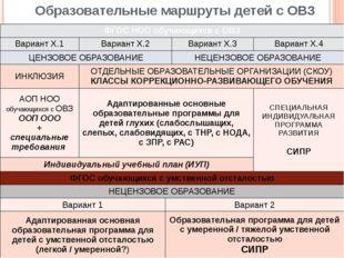 Образовательные маршруты детей с ОВЗ ФГОС НОО обучающихся с ОВЗ Вариант Х.1 В