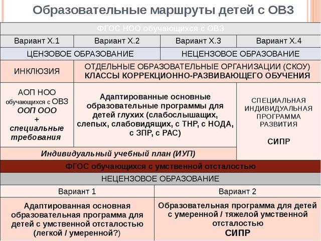 Образовательные маршруты детей с ОВЗ ФГОС НОО обучающихся с ОВЗ Вариант Х.1 В...