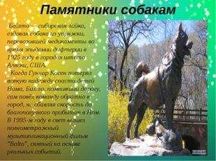 Памятники собакам . Ба́лто — сибирская лайка, ездовая собака из упряжки, пер