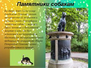 Памятники собакам .  Во дворе дома 12 по улице Академика Павлова стоит малои
