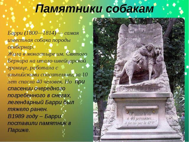 Памятники собакам . Барри (1800—1814) — самая известная собака породы сенберн...