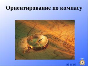 Ориентирование по компасу На оглавление
