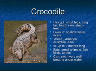 Crocodile Has got: short legs, long tail, tough skin, sharp teeth Lives in: s