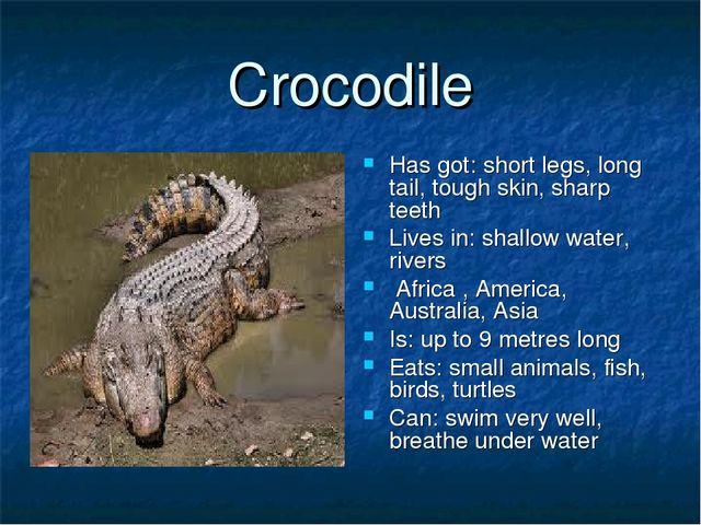Crocodile Has got: short legs, long tail, tough skin, sharp teeth Lives in: s...