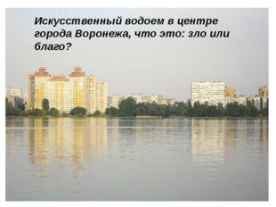 Искусственный водоем в центре города Воронежа, что это: зло или благо?