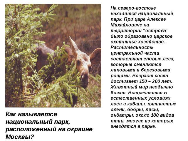На северо-востоке находится национальный парк. При царе Алексее Михайловиче н...