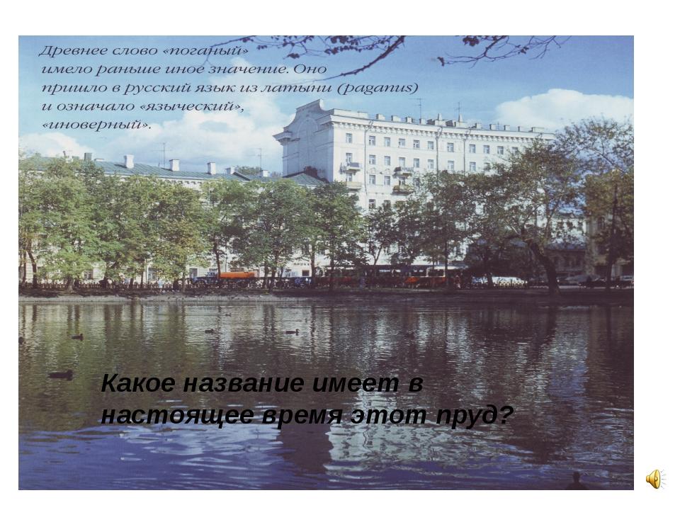 Какое название имеет в настоящее время этот пруд?