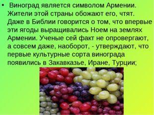 Виноград является символом Армении. Жители этой страны обожают его, чтят. Да