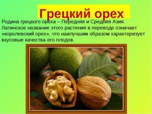 Грецкий орех Родина грецкого ореха – Передняя и Средняя Азия. Латинское назва