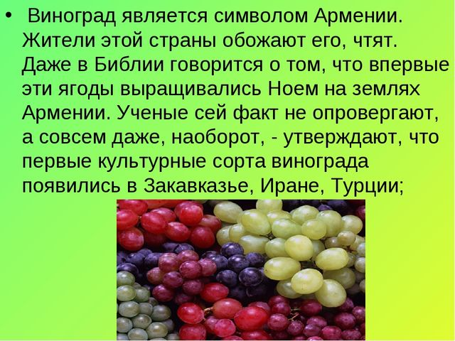 Виноград является символом Армении. Жители этой страны обожают его, чтят. Да...