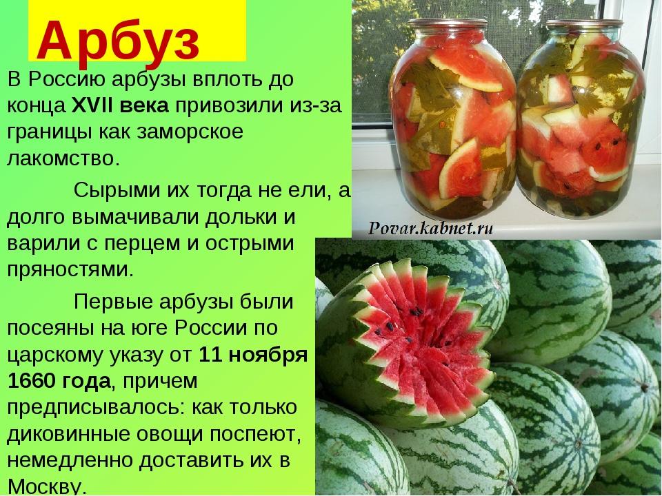 Арбуз В Россию арбузы вплоть до конца XVII века привозили из-за границы как з...