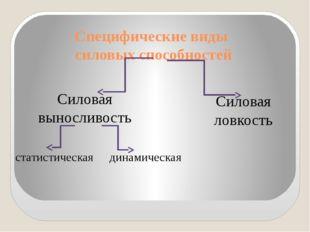 Специфические виды силовых способностей Силовая выносливость Силовая ловкость