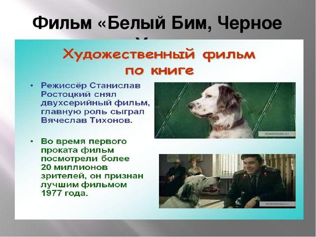 Фильм «Белый Бим, Черное Ухо»
