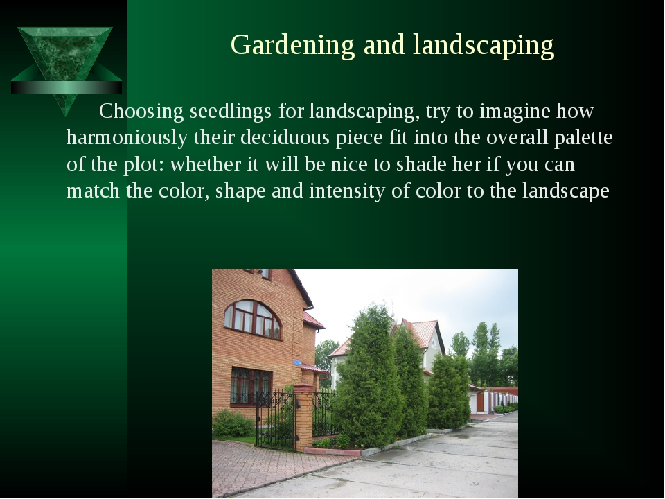 Gardening and landscaping Choosing seedlings for landscaping, try to imagine...