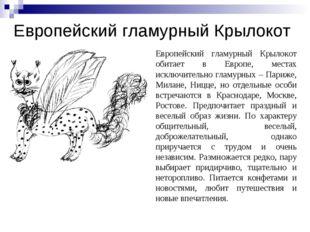 Европейский гламурный Крылокот Европейский гламурный Крылокот обитает в Европ