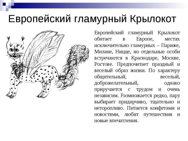 Европейский гламурный Крылокот Европейский гламурный Крылокот обитает в Европ...