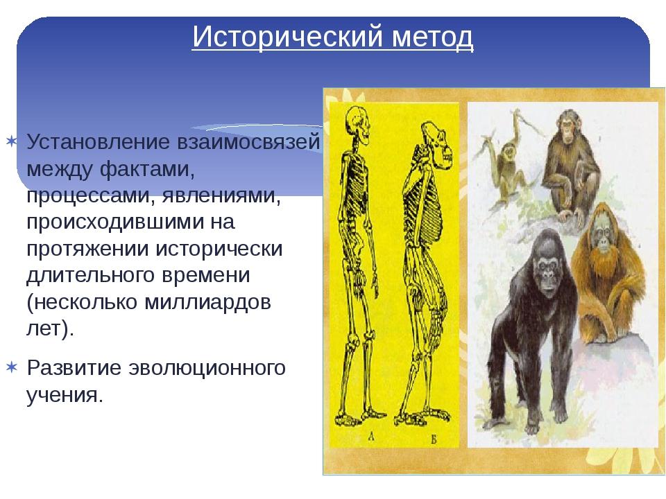 Исторический метод Установление взаимосвязей между фактами, процессами, явлен...