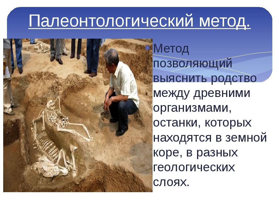 Палеонтологический метод. Метод позволяющий выяснить родство между древними о...