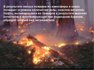 В результате лесных пожаров из атмосферы в океан попадает огромное количество