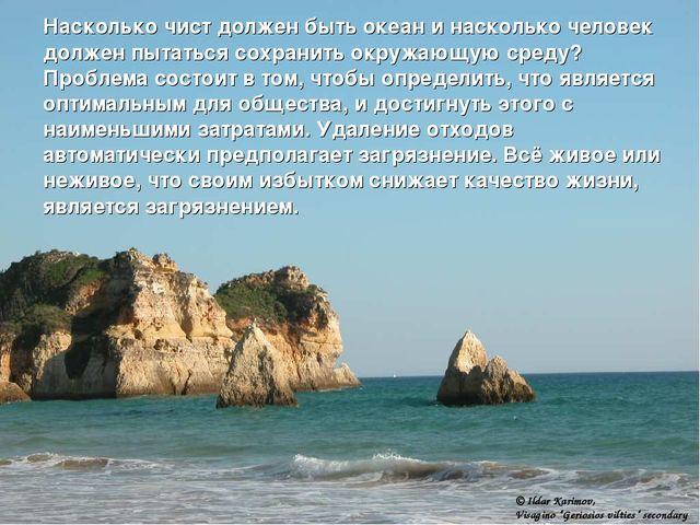 Насколько чист должен быть океан и насколько человек должен пытаться сохранит...