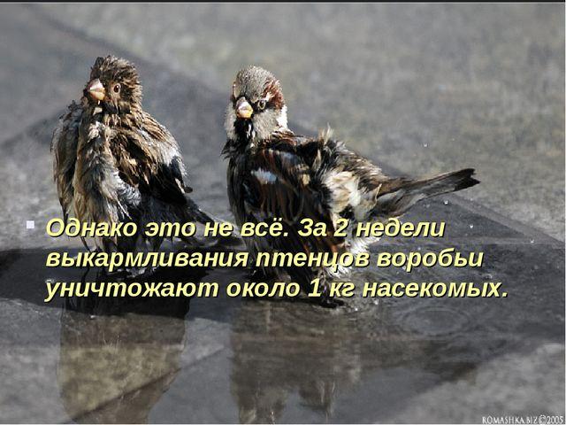Однако это не всё. За 2 недели выкармливания птенцов воробьи уничтожают около...
