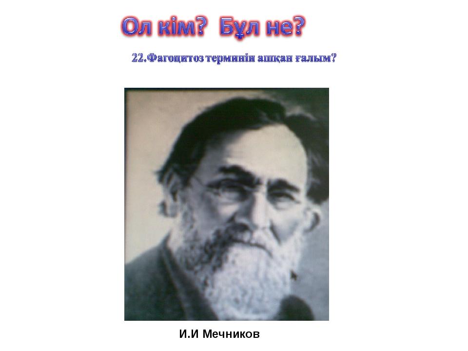 И.И Мечников