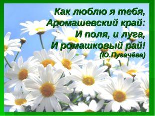 Как люблю я тебя, Аромашевский край: И поля, и луга, И ромашковый рай! (Ю.Пуг
