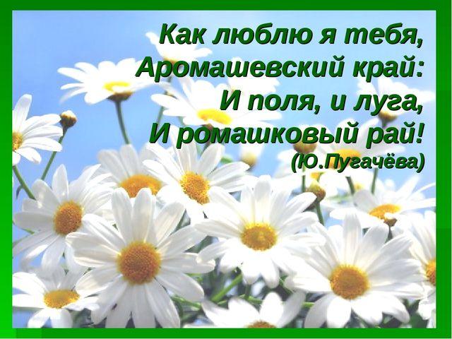Как люблю я тебя, Аромашевский край: И поля, и луга, И ромашковый рай! (Ю.Пуг...