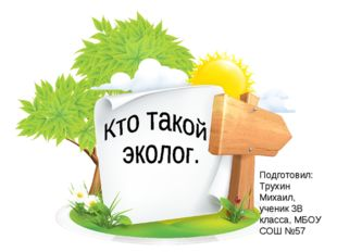 Подготовил: Трухин Михаил, ученик 3В класса, МБОУ СОШ №57