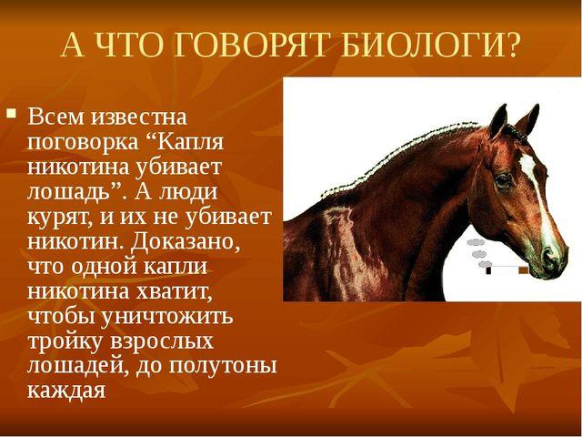 """А ЧТО ГОВОРЯТ БИОЛОГИ? Всем известна поговорка """"Капля никотина убивает лошадь..."""