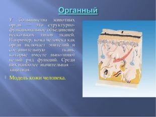 У большинства животных орган — это структурно-функциональное объединение нес