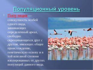 Популяция — совокупность особей одного вида, занимающих определенный ареал, с