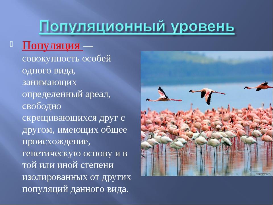 Популяция — совокупность особей одного вида, занимающих определенный ареал, с...