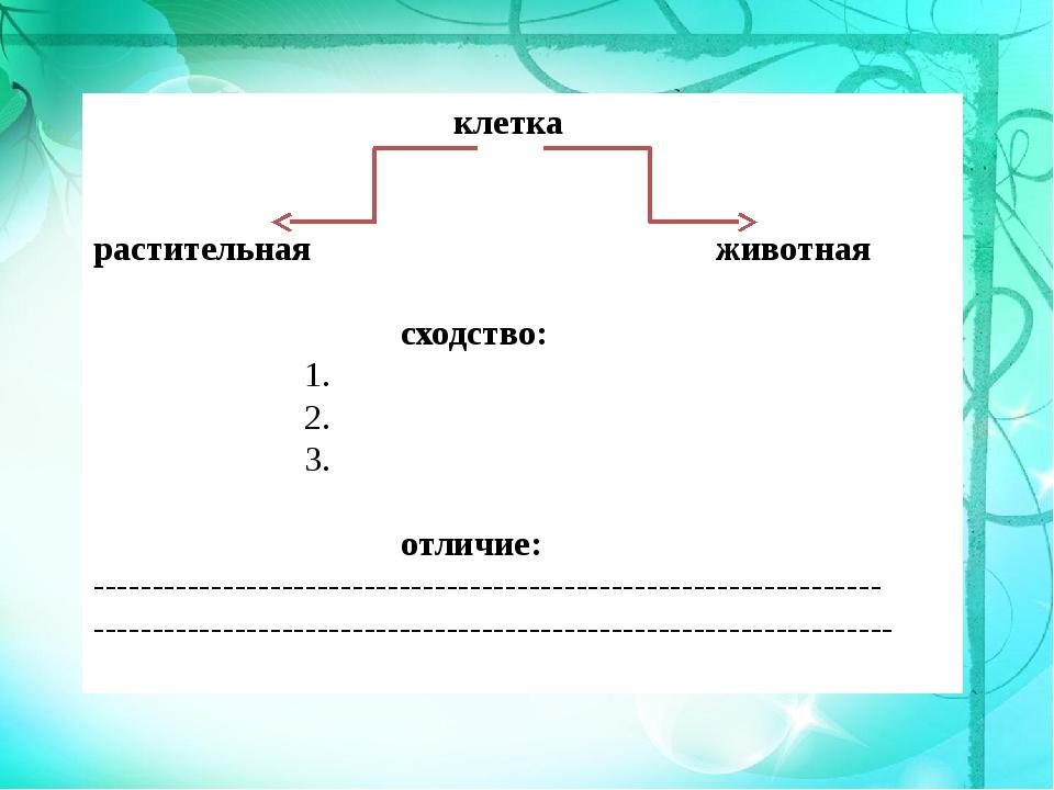 клетка растительная животная сходство: 1. 2. 3. отличие: -------------------...
