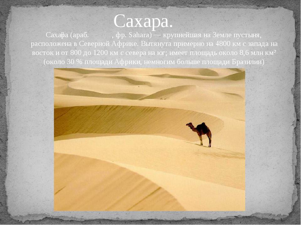 Сахара. Саха́ра (араб. صحراء, фр. Sahara) — крупнейшая на Земле пустыня, ра...