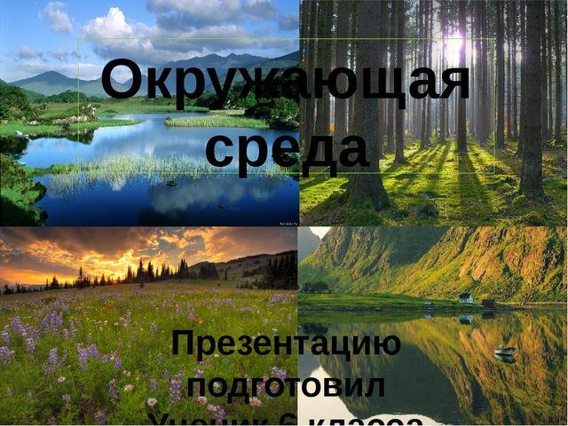 Окружающая среда Презентацию подготовил Ученик 6 класса Доржиева Татьяна