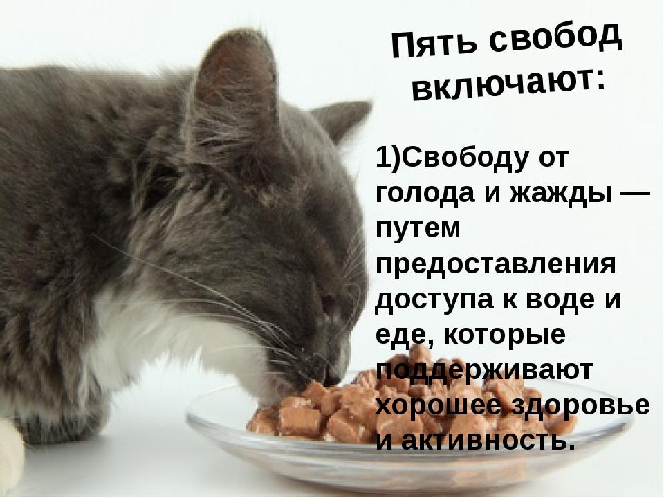 Пять свобод включают: 1)Свободу от голода и жажды — путем предоставления дост...