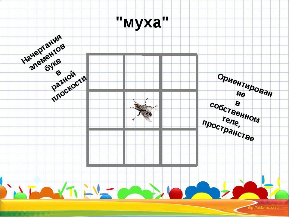 """""""муха"""" Начертания элементов букв в разной плоскости Ориентирование в собствен..."""