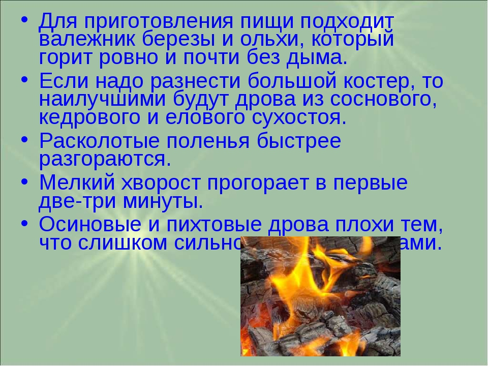 Для приготовления пищи подходит валежник березы и ольхи, который горит ровно...