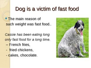 Dog is a victim of fast food The main reason of such weight was fast food.. C