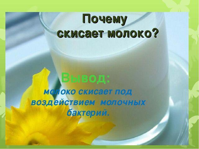 Вывод: молоко скисает под воздействием молочных бактерий. Почему скисает моло...