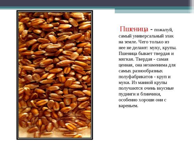 Пшеница - пожалуй, самый универсальный злак на земле. Чего только из нее не...