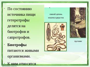 По состоянию источника пищи гетеротрофы делятся на биотрофов и сапротрофов. Б