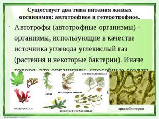 Существует два типа питания живых организмов: автотрофное и гетеротрофное. Ав