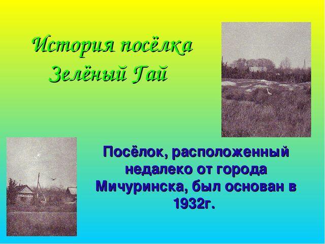 История посёлка Зелёный Гай Посёлок, расположенный недалеко от города Мичурин...