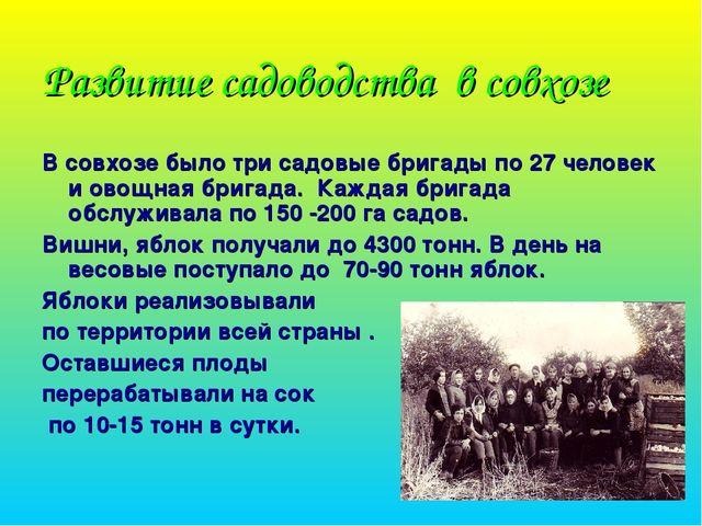 Развитие садоводства в совхозе В совхозе было три садовые бригады по 27 челов...