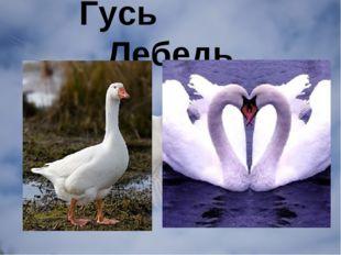 Гусь Лебедь