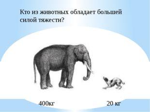 400кг 20 кг Кто из животных обладает большей силой тяжести?