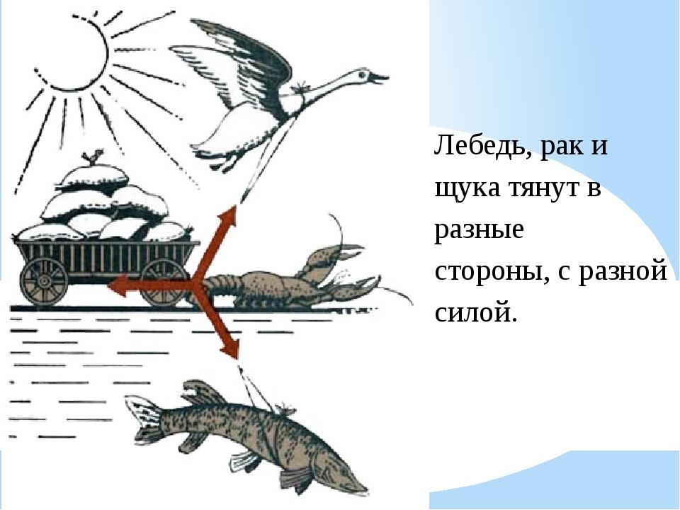 Лебедь, рак и щука тянут в разные стороны, с разной силой.
