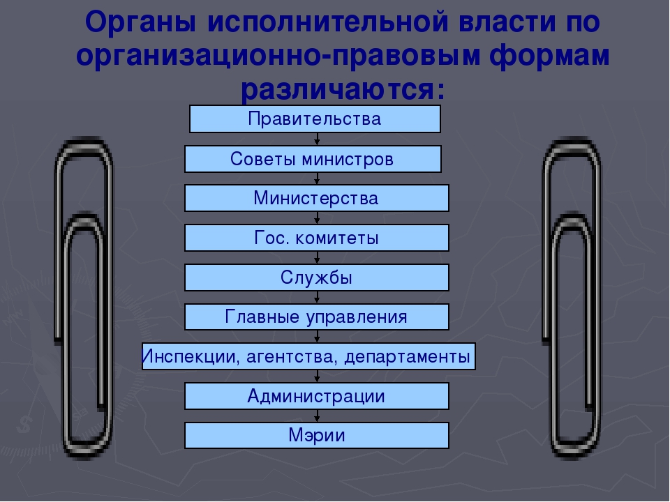 Органы исполнительной власти по организационно-правовым формам различаются: П...